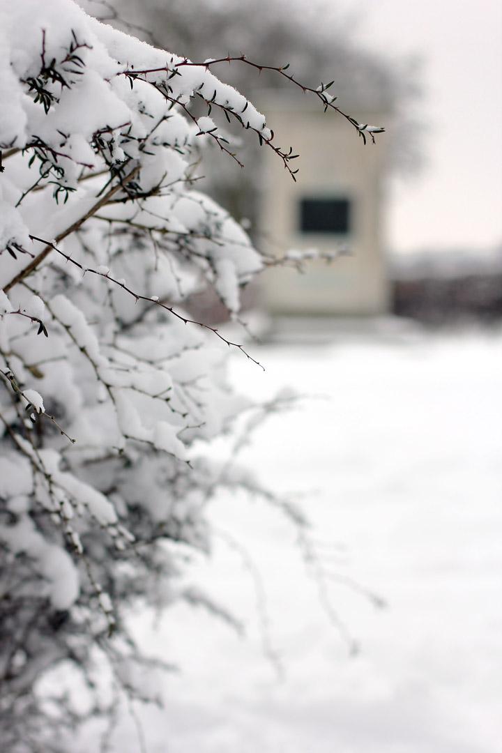 Bourne Park Ipswich Bourne Park in The Snow